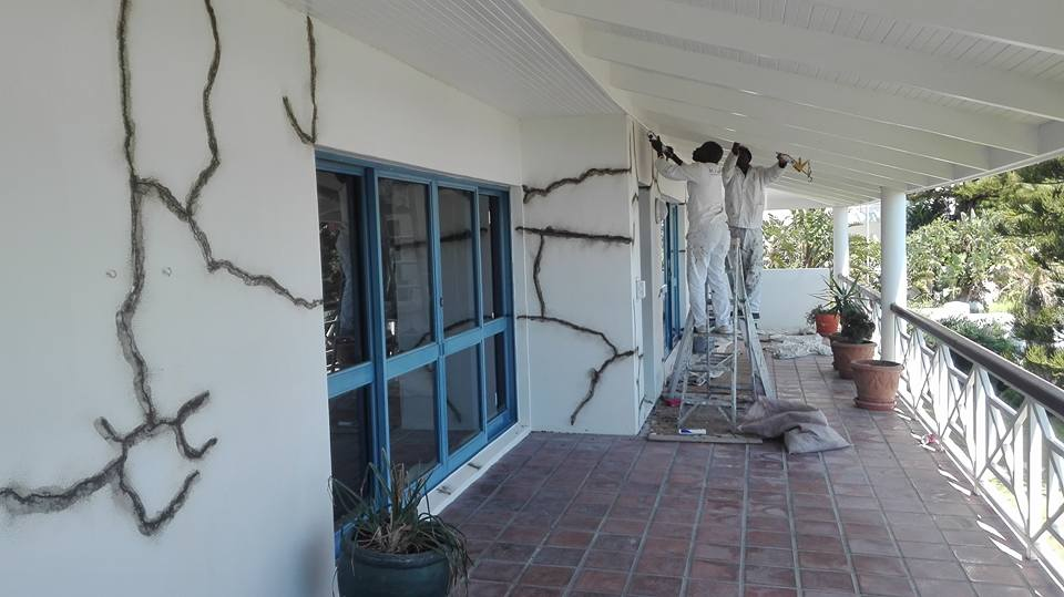 Hout Bay Painters