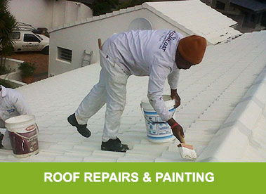 Roof Painting & Repairs